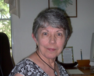 Welcoming to judithnorris.com. Offering to write their information so they hire me,